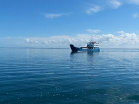 Fraser Island Ferry