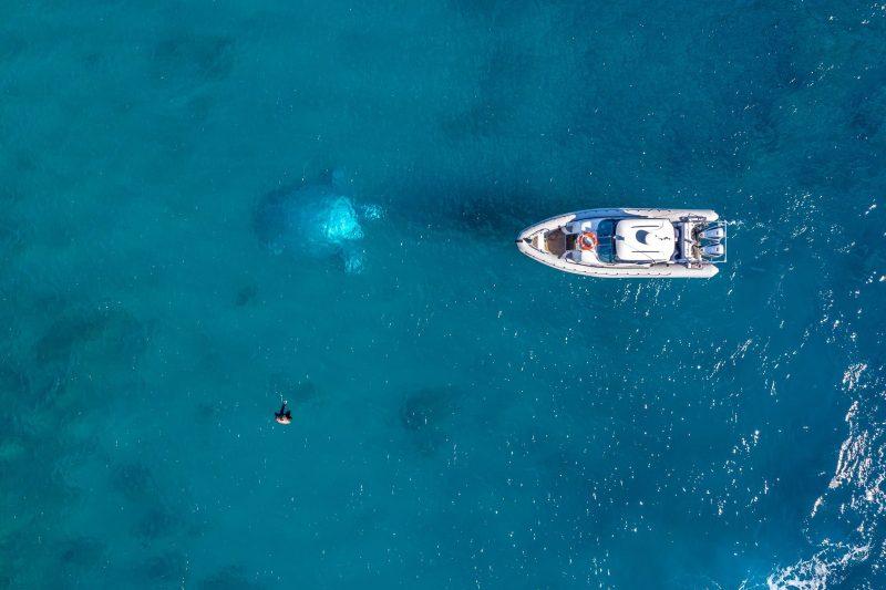 Private Charter Hamilton Island | Underwater Sculptures Whitsundays