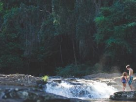 Gardners Falls, Maleny, Sunshine Coast