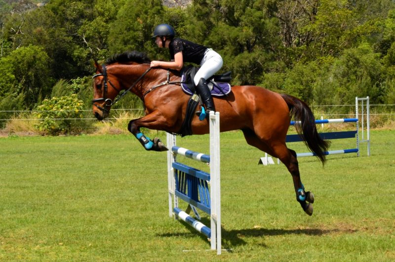 See Junior riders compete at the hieghts level to improve their skills.