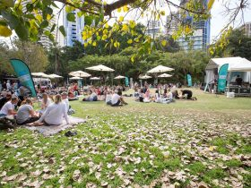 Gigs & Picnics in City Botanic Gardens