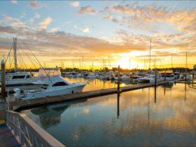 Gladstone Marina Sunset