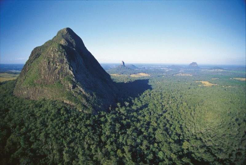 Mount Beerwah rising above surrounding forest.