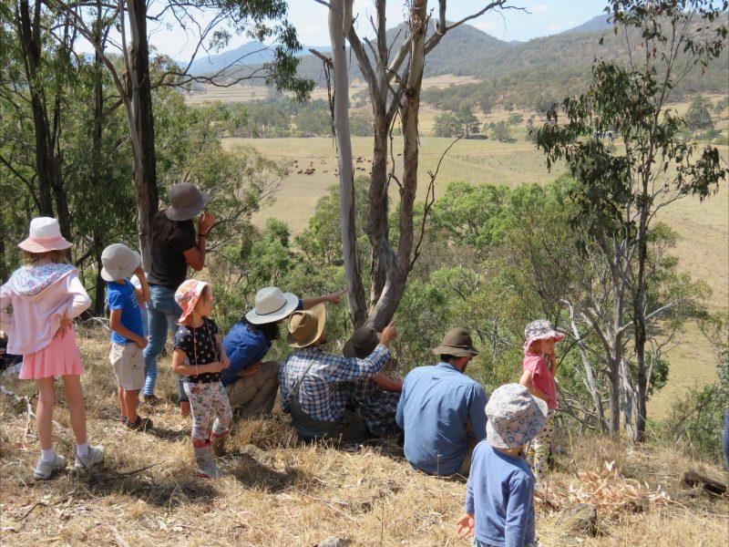 Gleneden Family Farm lookout