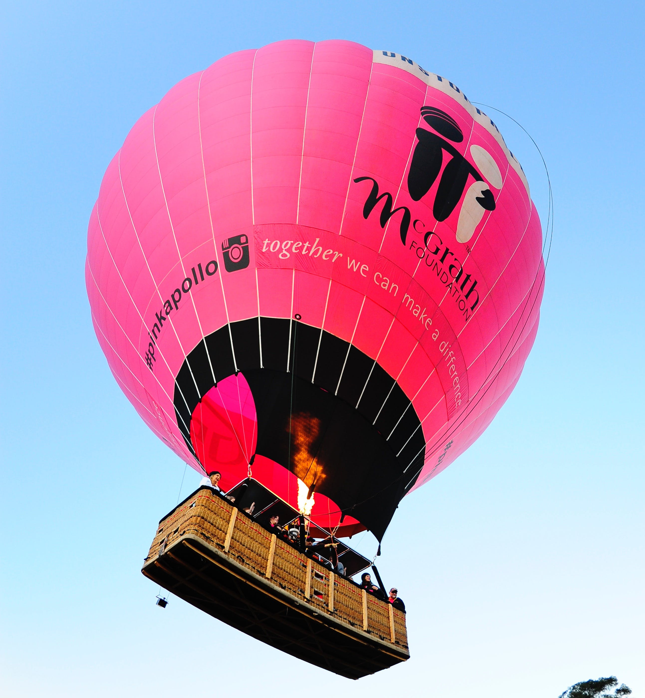 Giant Pink Hot Air Balloon rising up into the Air