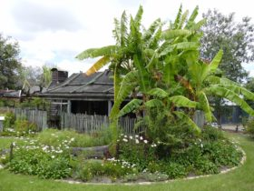 Gold Coast and Hinterland Historical Society