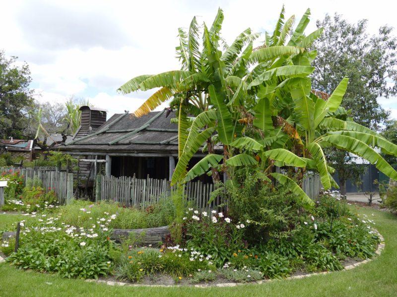 Gold Coast and Hinterland Historical Society