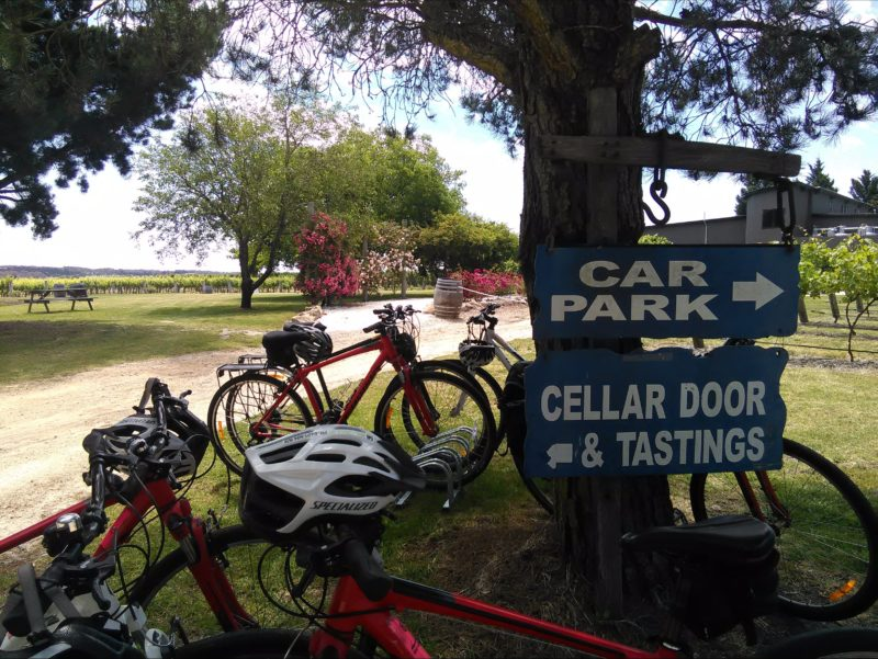 Bicycles parked outside a Granite Belt winery.
