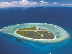 Lady Elliot Island, Southern Great Barrier Reef