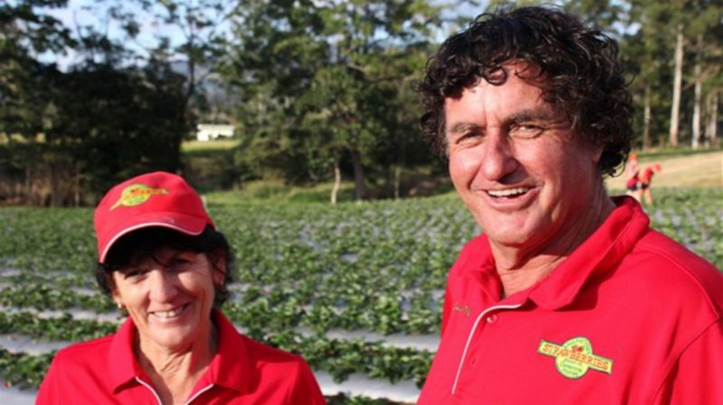 Alan and Margaret Ballantyne's Strawberry Farm