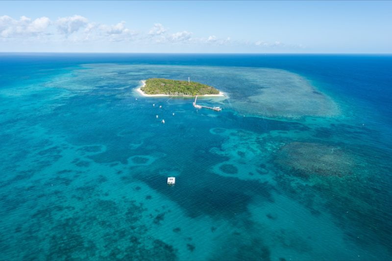 Aerial of Green Island and reef