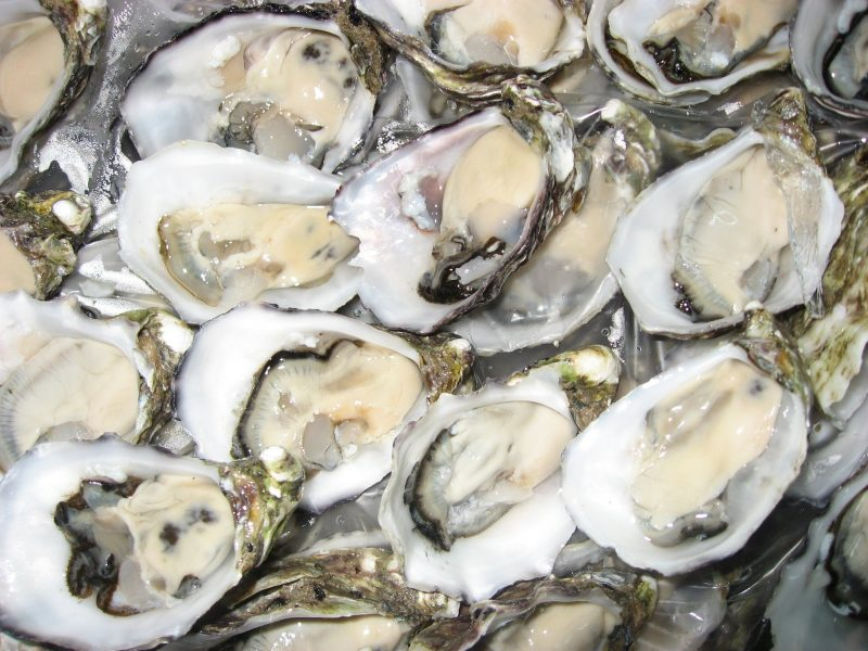 Fresh Pacific Oysters
