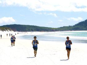 Hamilton Island Endurance Series - Great Whitehaven Beach Run