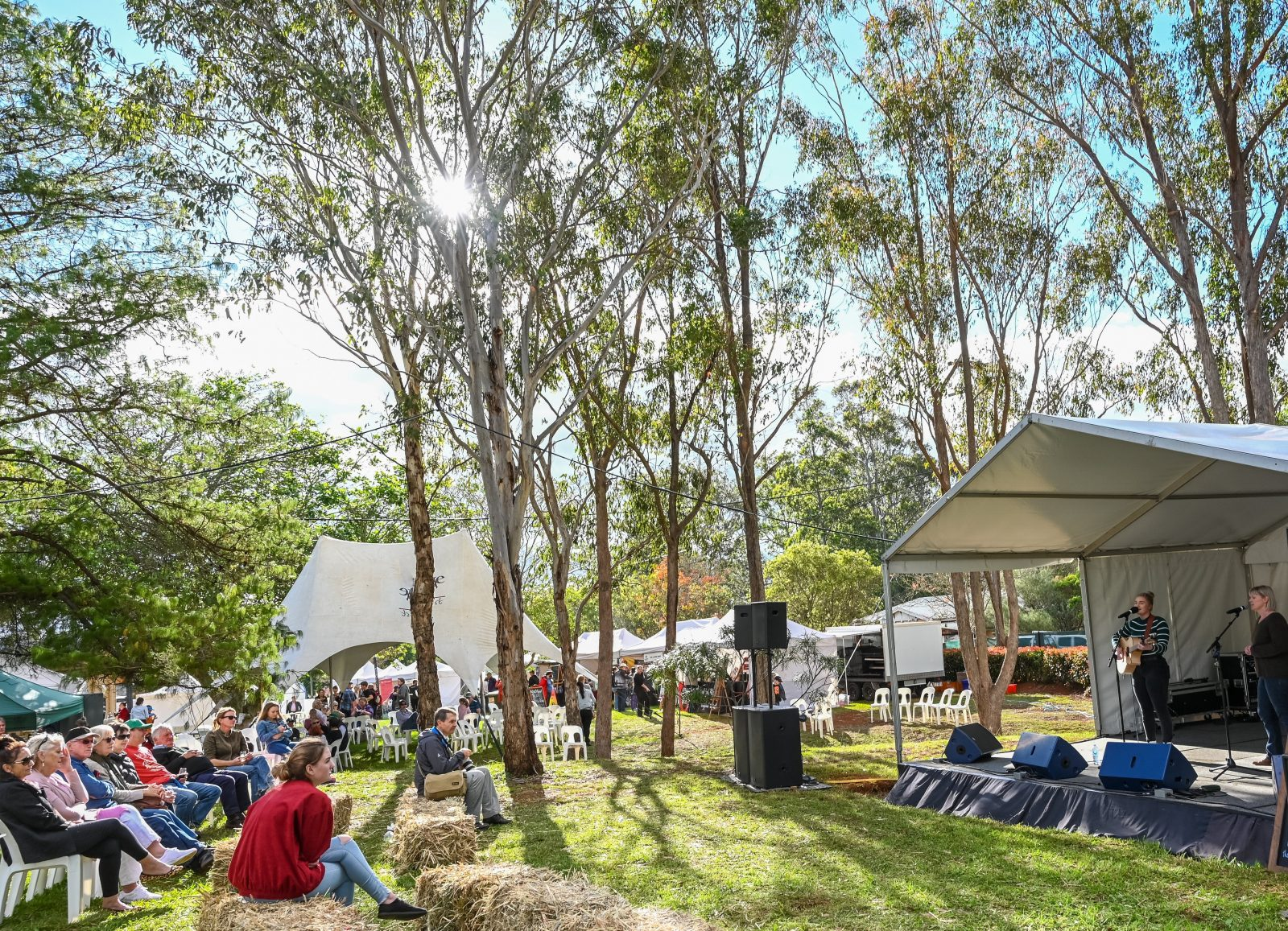 Enjoy the Festival's live music and taste superb, local produce, food and wine