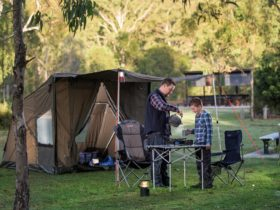 Hardings Paddock Campground, Ipswich