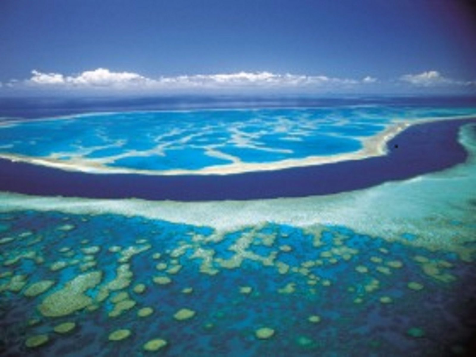 Hardy Reef, Great Barrier Reef, Queensland