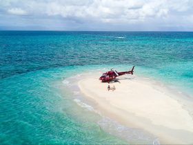 Ultimate Sand Cay Experience