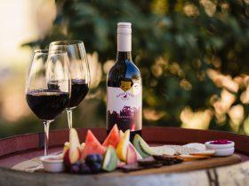 Wine/Platter