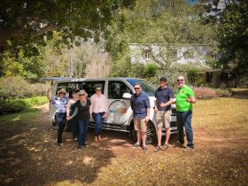 High Country Tours With Taste group