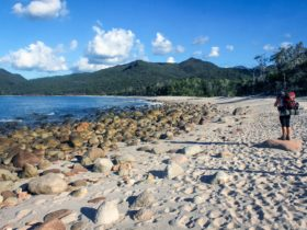 Hiking Hinchinbrook Island