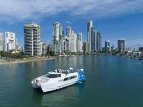 Hopo Gold Coast Ferry