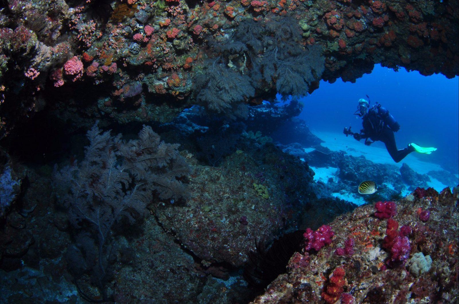 Hutchinson Shoal Dive Site