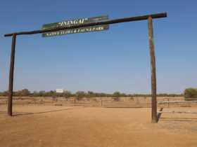 Iningai Nature Reserve