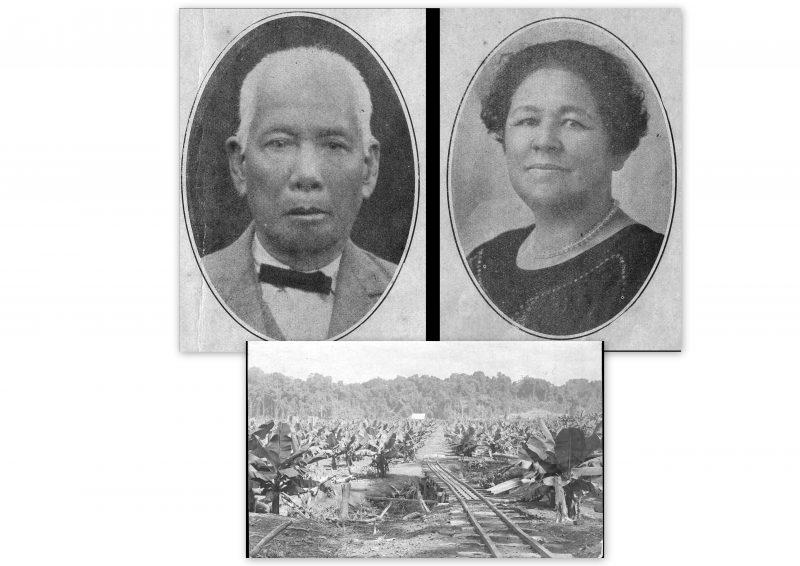 Chinese Pioneers and banana plantation (SJ Book)