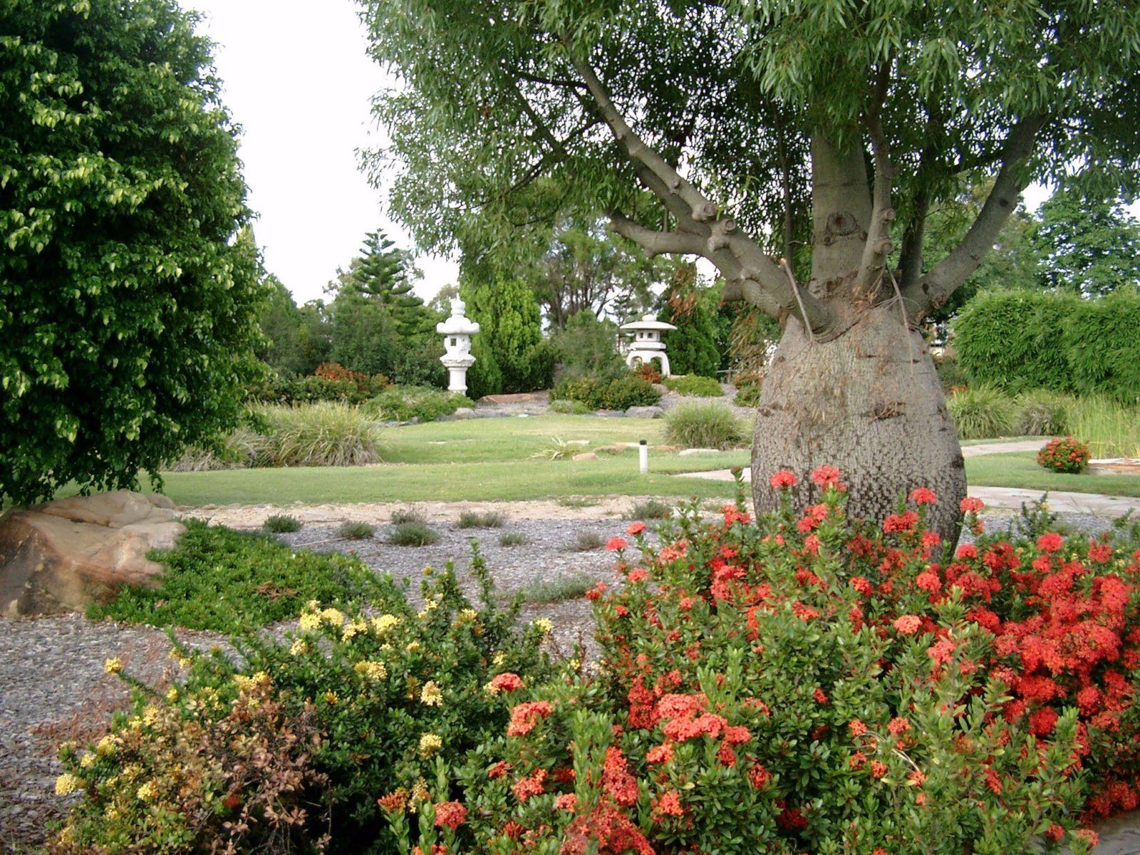 Japanese Gardens Blackwater