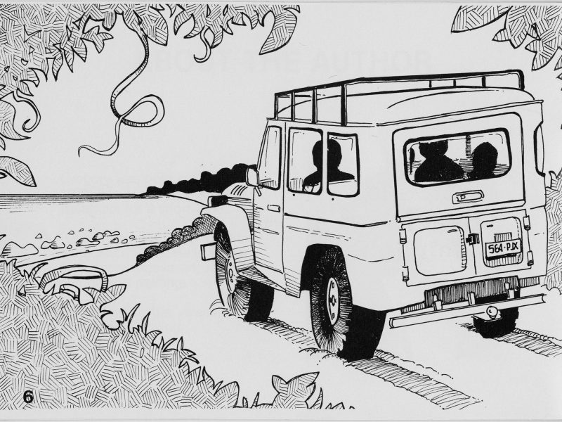 4WD illustration from The crocodile