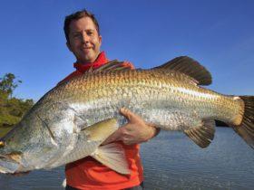 JCs guided sportfishing