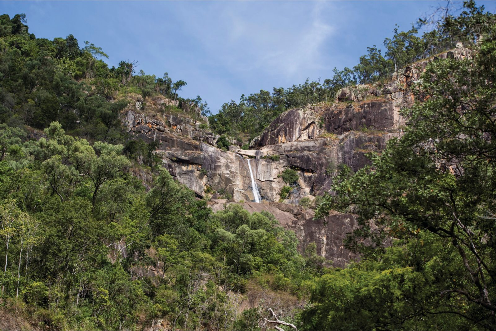 Jourama Falls, cliff face and surrounding woodland.