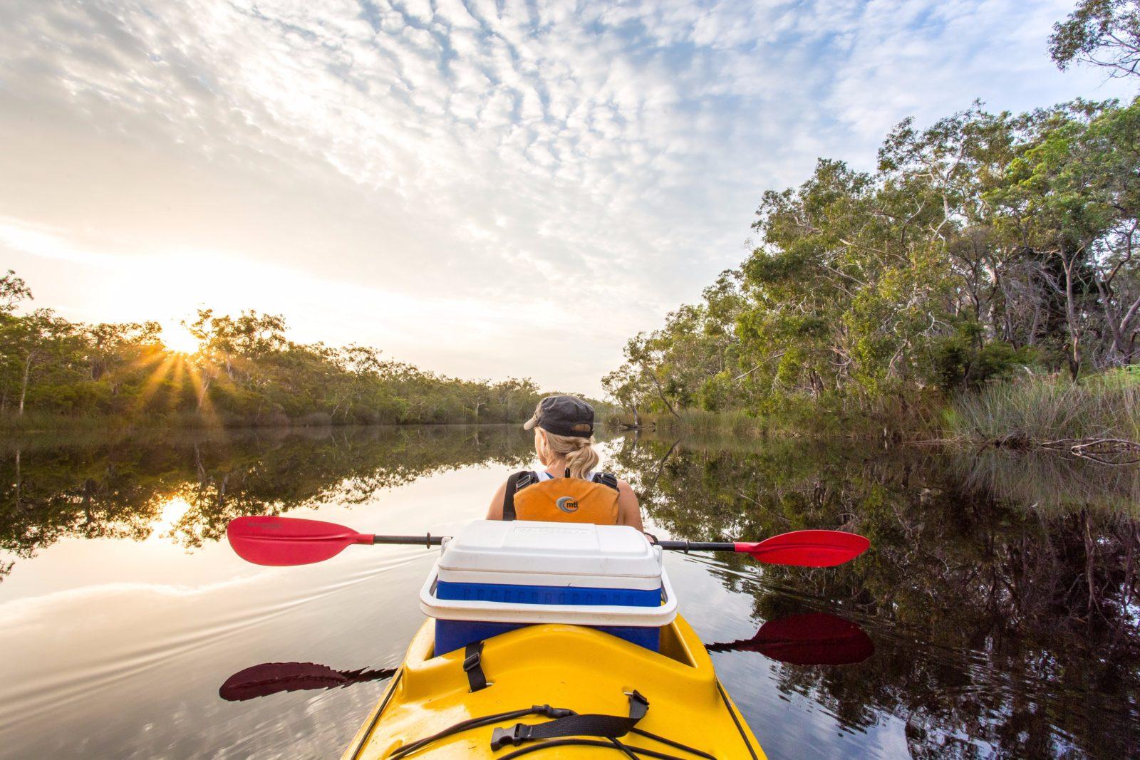 Upper Noosa River- Noosa Everglades
