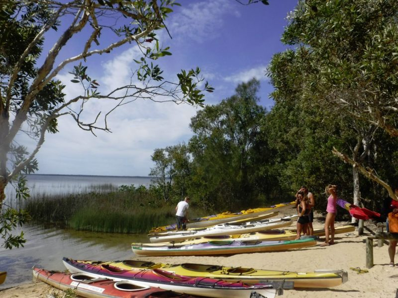 Elanda kayaks