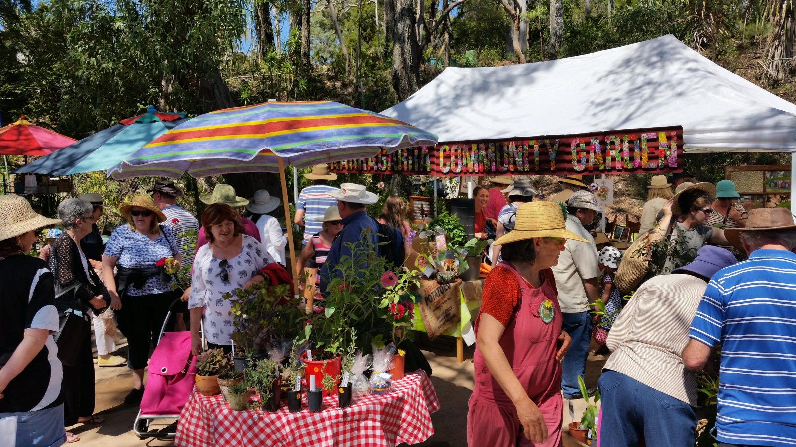 Lots of plants on tables, bright hand made garden signs, umbrellas, pleaople viewing plants.