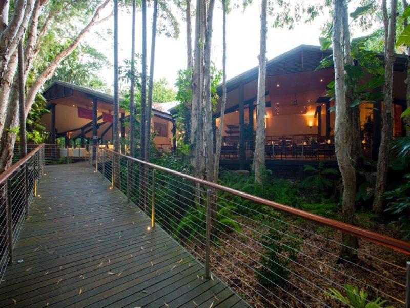 Rainforest Walkway Deck
