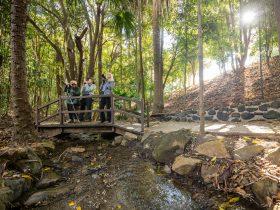 Kholo Gardens