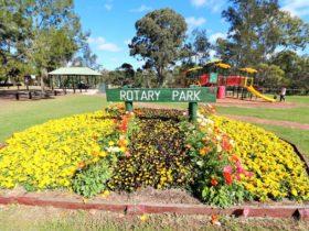 Kingaroy Rotary Park