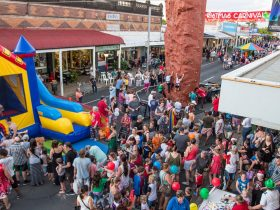 Laidley Christmas Street Festival