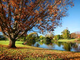 Lake Annand, Toowoomba
