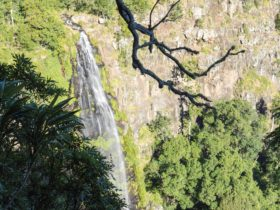Waterfall, Green Mountains, Lamington National Park