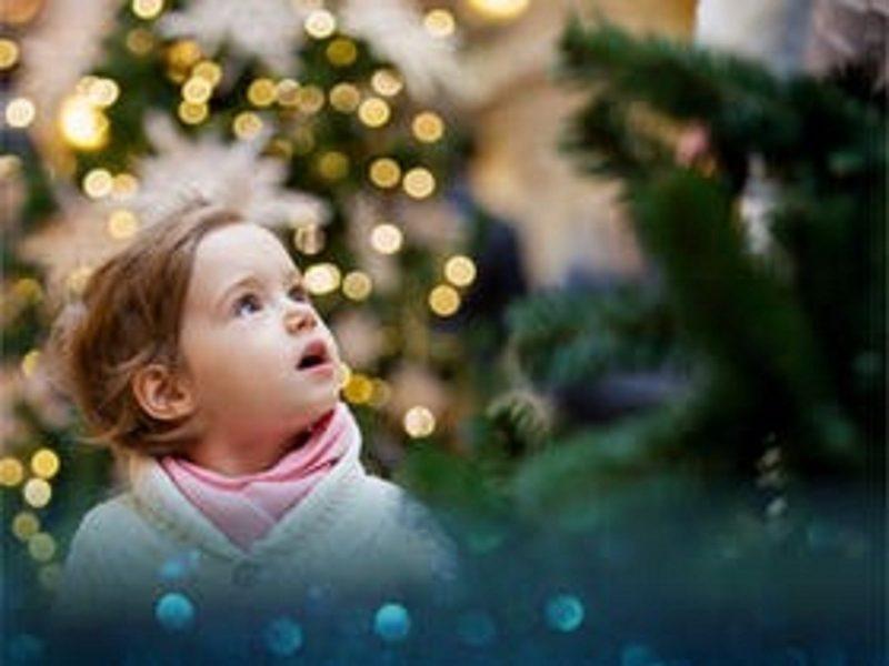 Lightup your Christmas
