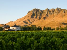 Craggy Range Winery surrounded by mountains