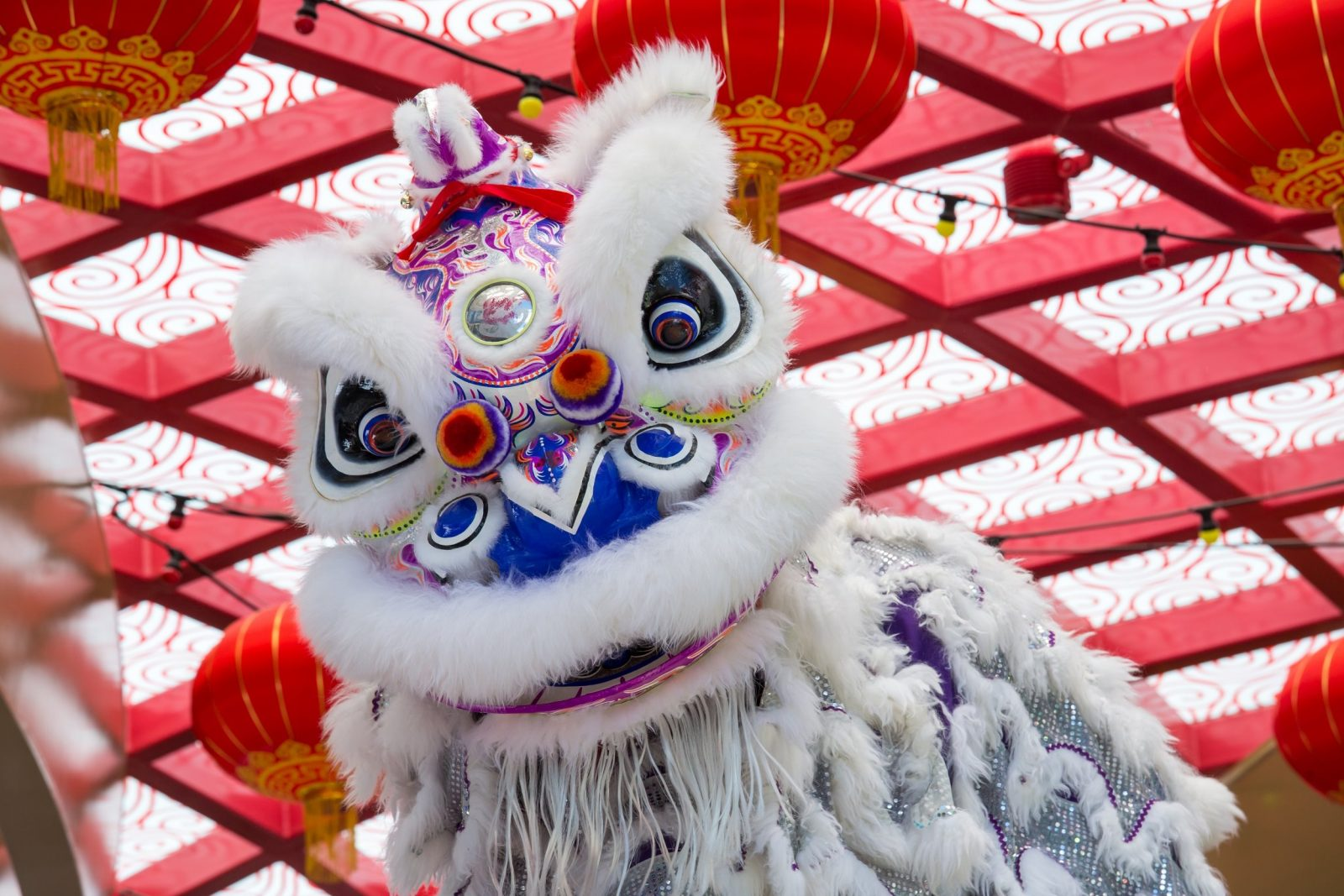 Lion Dance Lunar New Year
