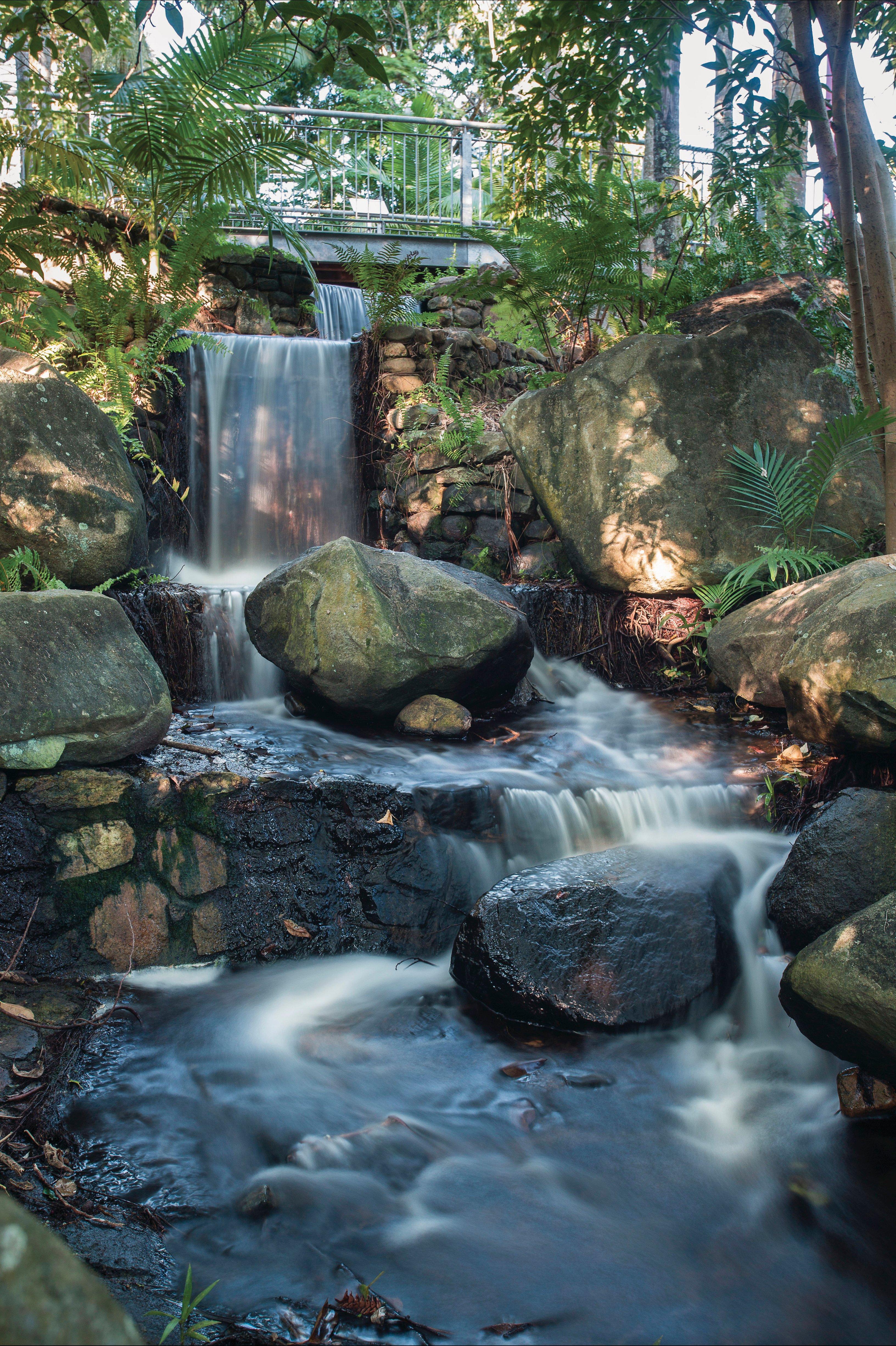 Waterfall in the Mackay Botanic Gardens