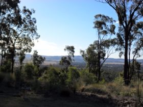 South Burnett Scenery
