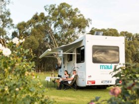 maui motorhome campervan queensland cairns