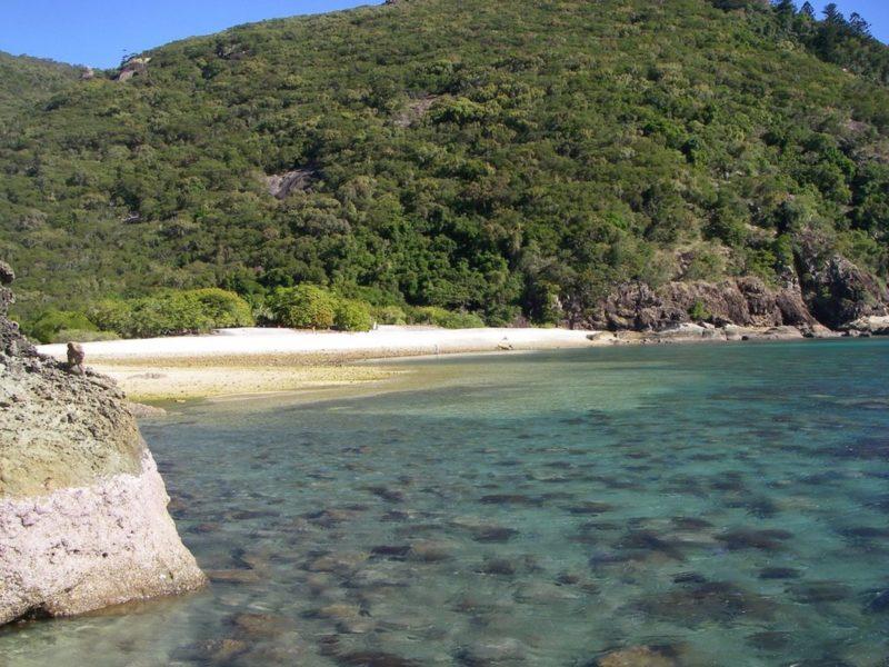 Maureens Cove - Hook Island