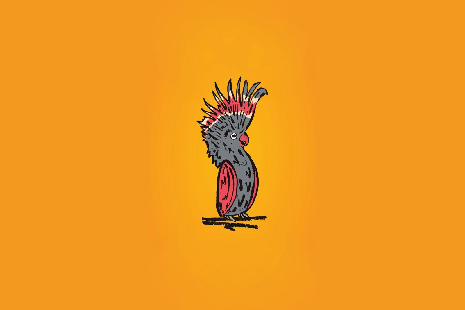 cockatoo on orange background