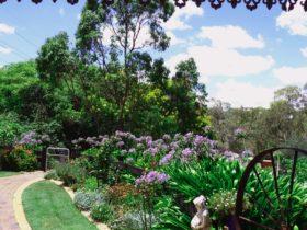 View from Mirambeena Retreat